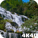4K Waterfall Video Live Wallpaper by 4K4U