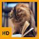 Baby Kitten HD FREE Wallpaper by FarrayStudio