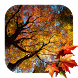 Beautiful Autumn Live Wallpaper by Acinis