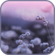 Flower Wind Live Wallpaper by Photo Applications