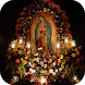 La sagrada Virgen de Guadalupe by Jacm Apps