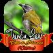 Canto de Trinca Ferro by Ikhlas Apps