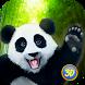 Panda Family Simulator by Wild Animals World