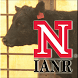 Udder & Teat Scoring Beef Cows by The University of Nebraska - Lincoln