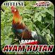 Suara Denak Ayam Hutan Offline