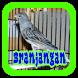 Suara Burung Branjangan by rezpectordev