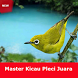 Master Kicau Pleci Juara Full by net-digitalplay