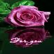 Purple Rose Reflection LWP by Daksh Apps