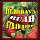 Tips Budidaya Buah Strawberry by Asdapp