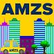 AMZS City drive VR