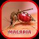 Malaria Disease Help