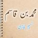 Muhammad Bin Qasim Urdu Novel by Naseem Hijazi