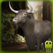 Angry Bull Simulator by SPECTRUMsoft