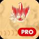 Snowsport Video App PRO by Tuuls.net