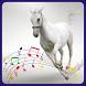 Animal Voice by DeveloperzX