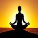 Yoga Sutras Swami Vivekananda by Palani Rajan