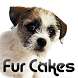 Fur Cakes - Riley by Amplitude Metamedia Corp.