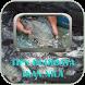 Tips Budidaya Ikan Nila by Ragam Studio