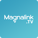 Magnalink TV by 4NET.TV solutions a.s.