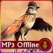 Suara Burung Branjangan untuk Masteran Offline by kicaumania suara burung
