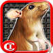 Sewer Rat Run! 3D PLUS by Chi-Chi Games