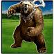 Wild Bear Simulator 3d game 2017