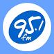 Radio Visión Celestial 95.1 by VeemeSoft