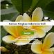 Kamus Ringkas Bahasa Bali