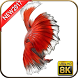 Betta Fish Wallpapers 8K by Androito