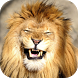 Lion Laugh by Empire Animalia