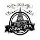 Radyo Angora by Teknolojini