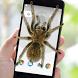 Spider on Screen Prank