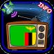 TV Channel Online Zambia by Player Flash Info HD