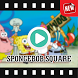 Sponge Video Collection by Zloopy Creative