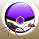 Pocket Bug Catch & Go by Dominewa