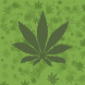 Marihuana 3D Live Wallpaper by NatureSoft Games