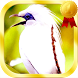 Kicau Burung Lengkap by Jayakerta Bizz