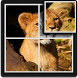 Baby Lion Puzzle for Kids by D.S develop
