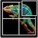 Chameleon Puzzle for Kids by D.S develop