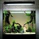 Aquarium Idea by jejama