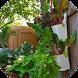 Home Vegetable Garden by FIBERAL