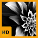 Black and White HD FREE Wallpaper by FarrayStudio