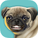 "Say ""Cheese!"" by TRISTANAPPS LLC"