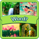 4 pictures 1 word (Unreleased) by SmallDevTeam