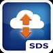 InfoCradle SDS by SSP Europe GmbH