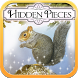 Hidden Pieces: Autumn Garden by Difference Games LLC