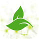 China Man Foot Reflexology by MOMobileApps Pte Ltd