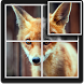 Fox Puzzle for Kids by D.S develop