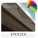 Theme XPERIEN™- Numb by IRemi theme