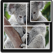 Koala Puzzle for Kids by D.S develop